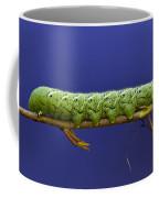 Tomato Hornworm Coffee Mug