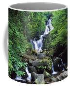 Torc Waterfall, Killarney National Coffee Mug