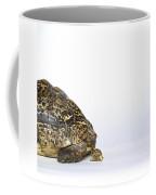 Tortoise Love Coffee Mug