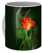 Touch Of Summer Coffee Mug