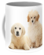 Toy Poodle And Golden Retriever Coffee Mug