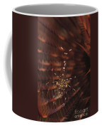 Transparent Shrimp On A Brown Feather Coffee Mug