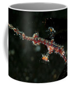 Transparent White And Red Harlequin Coffee Mug