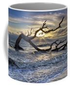 Treasures Of The Sea Coffee Mug