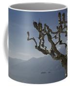 Tree And Mountain Coffee Mug