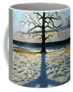 Tree And Shadow Calke Abbey Derbyshire Coffee Mug by Andrew Macara