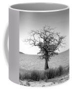 Tree And Water Coffee Mug
