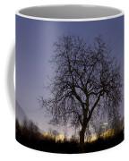 Tree At Night With Stars Trails Coffee Mug
