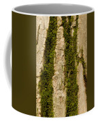 Tree Bark Mossy 4 C Coffee Mug
