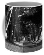 Tree Canopy Promenade Road Drive . 7d9977 . Black And White Coffee Mug