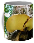 Tree Fungus 2 Coffee Mug