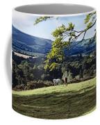 Tree In A Field, Great Sugar Loaf Coffee Mug