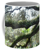 Tree Of Life Panorama Coffee Mug