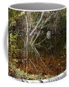 Tree Reflections Stoney Creek Coffee Mug