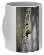 Tree Step Coffee Mug