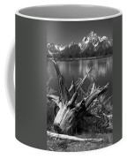 Tree Stump On The Shore Of Lewis Lake At Yellowstone Coffee Mug