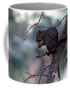 Tree Top Nut Coffee Mug
