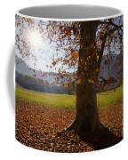 Tree With Autumn Leaves Coffee Mug