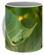Treefrog Resting Coffee Mug