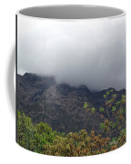 Trees And Leaves At The Base Of A Mountain With Clouds And Mist Covering The Top Coffee Mug
