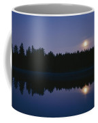 Trees And Sun Are Reflected In A Lake Coffee Mug