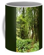Trees At Cathedral Grove Coffee Mug