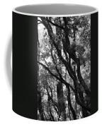 Trees Beautiful Trees Coffee Mug
