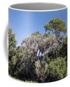 Trees Decorated With Moss Coffee Mug