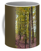 Trees Of Golden Hues Coffee Mug