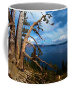 Trees On The Crater Coffee Mug
