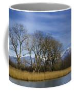 Trees On The Lakefront Coffee Mug