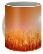 Trees With Sunlight Coffee Mug