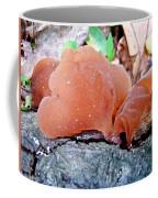 Tremella Mesenterica - Orange Brown Brain Fungus Coffee Mug