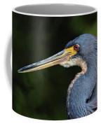 Tricolor Heron Portrait Coffee Mug