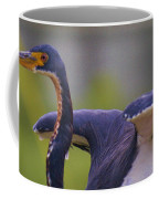Tricolored Heron About To Fly Coffee Mug