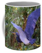 Tricolored Heron In Flight Coffee Mug