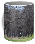 Trinity Park Ft Worth Tx Coffee Mug