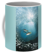 Trio Of Snappers Hunting For Bait Fish Coffee Mug