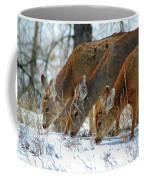 Triple Play Coffee Mug