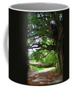 Tropical Banyan Path Coffee Mug