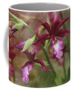 Tropical Beauty Coffee Mug by Debra and Dave Vanderlaan