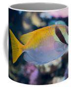 Tropical Fish Coffee Mug