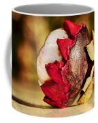 Tropical Mangosteen - Ready To Eat Coffee Mug by Kaye Menner