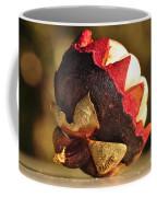 Tropical Mangosteen - The Medicinal Fruit Coffee Mug by Kaye Menner