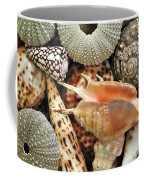 Tropical Shells Coffee Mug