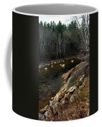 Trout Fishery Coffee Mug by Skip Willits