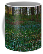 Trout Lilies On Forest Floor Coffee Mug by Steve Gadomski