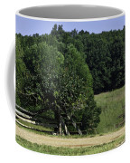 Trumpet Vine And Fence At Appomattox Courthouse Virginia Coffee Mug by Teresa Mucha