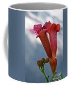 Trumpet Vine Floral Coffee Mug