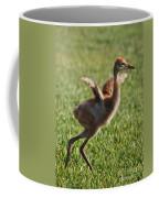 Trying To Fly Coffee Mug